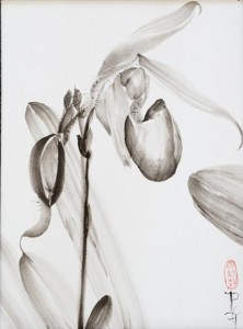 Dixler Orchid I 20 x 16 sumi-e painting by by Patricia Larkin Green
