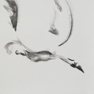 PatriciaLarkinGreen L'oiseau libre